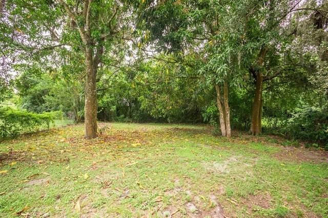 311 Dorsett Avenue, Lake Wales, FL 33853 (MLS #L4924944) :: Zarghami Group