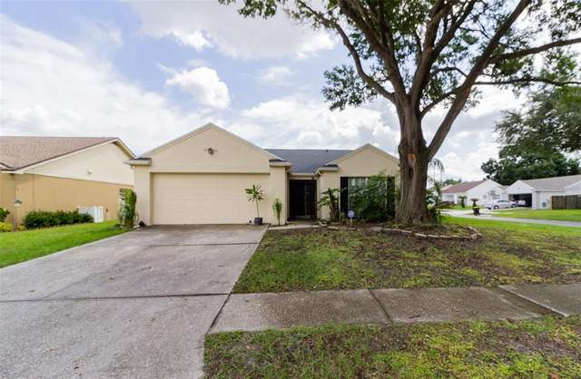 6084 Morningdale Avenue, Lakeland, FL 33813 (MLS #L4925170) :: Zarghami Group