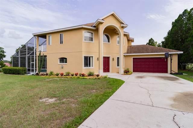 2502 Roslyn Lane, Lakeland, FL 33812 (MLS #L4925208) :: Zarghami Group
