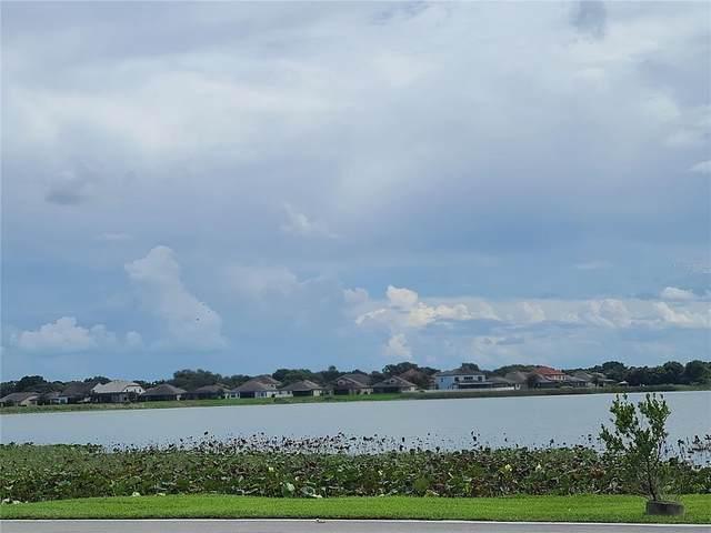 1816 W Lake Parker Drive, Lakeland, FL 33805 (MLS #L4925257) :: Zarghami Group