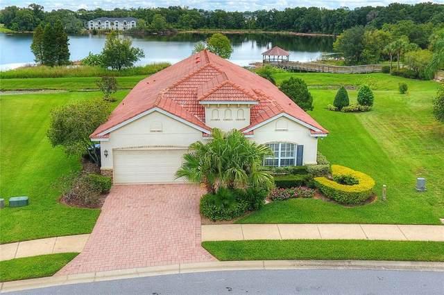 1727 Via Lago Drive, Lakeland, FL 33810 (MLS #L4925295) :: Zarghami Group