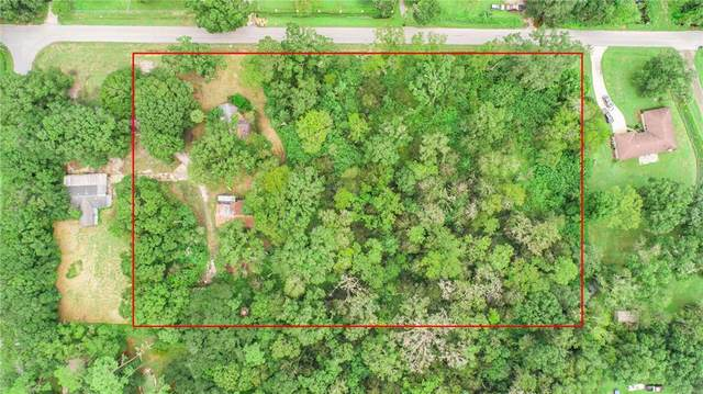 304 S Saddle Creek Farm Road, Lakeland, FL 33801 (MLS #L4925396) :: The Paxton Group