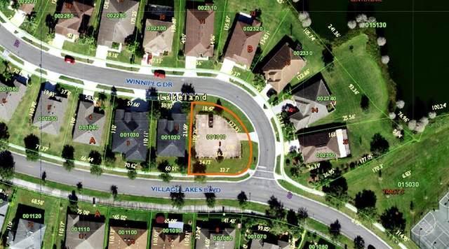 2489 Winnipeg Drive, Lakeland, FL 33805 (MLS #L4925444) :: Zarghami Group