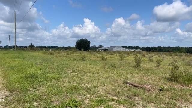 Lake Lowery Road, Haines City, FL 33844 (MLS #L4925473) :: Vacasa Real Estate