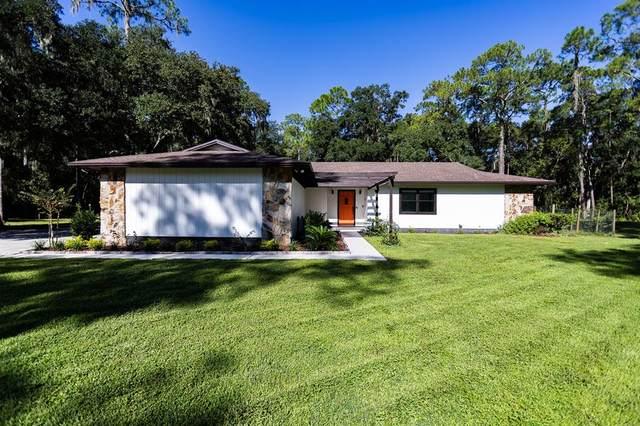 1740 Carson Drive, Lakeland, FL 33810 (MLS #L4925502) :: Lockhart & Walseth Team, Realtors