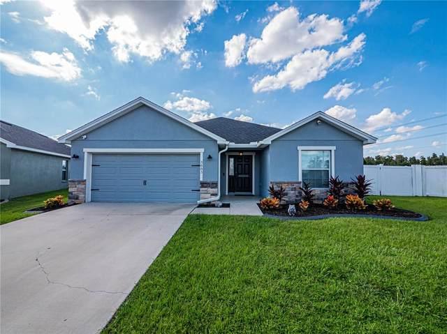 3883 Sandhill Crane Drive, Lakeland, FL 33811 (MLS #L4925547) :: RE/MAX Marketing Specialists