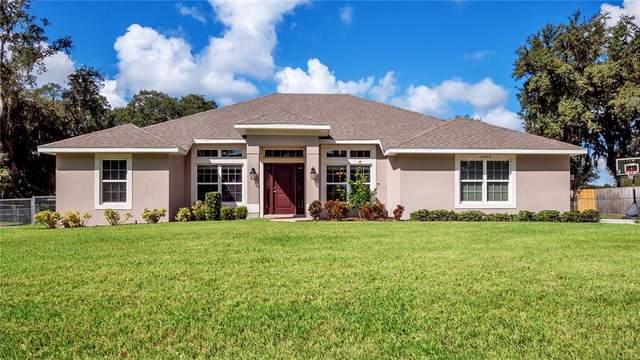 5939 Buck Run Drive, Lakeland, FL 33811 (MLS #L4925719) :: Alpha Equity Team