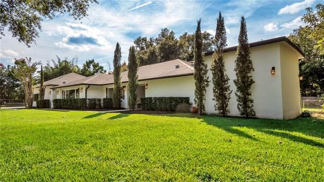 520 Haley Drive, Windermere, FL 34786 (MLS #L4925912) :: Vivian Gonzalez   Ocean Real Estate Group, LLC