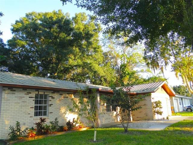 721 Hemlock Lane, Lakeland, FL 33810 (MLS #L4925915) :: Alpha Equity Team