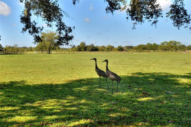 5141 Eagles Nest Drive, Lakeland, FL 33810 (MLS #L4925917) :: Florida Real Estate Sellers at Keller Williams Realty