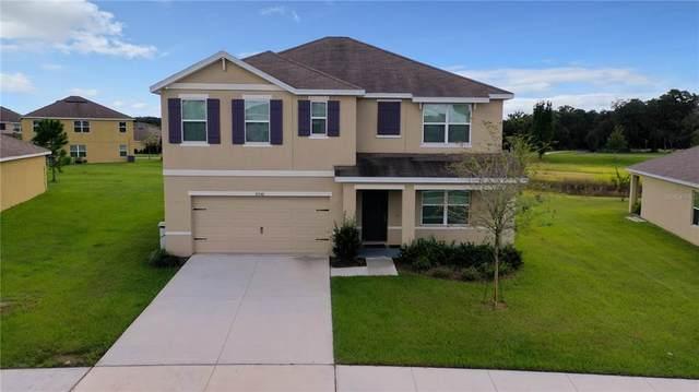 35740 Hillbrook Avenue, Zephyrhills, FL 33541 (MLS #L4925974) :: RE/MAX Local Expert
