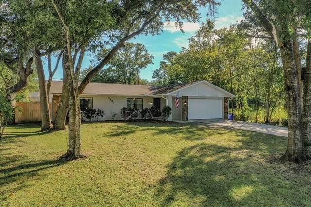 3431 Kumquat Drive, Edgewater, FL 32141 (MLS #L4926112) :: Keller Williams Suncoast