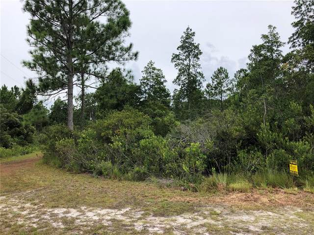 112 Osprey Circle, Georgetown, FL 32139 (MLS #L4926115) :: RE/MAX Local Expert