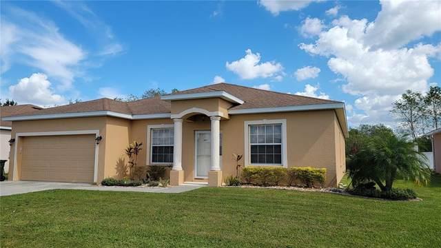 3669 Sandhill Crane Drive, Lakeland, FL 33811 (MLS #L4926143) :: SunCoast Home Experts
