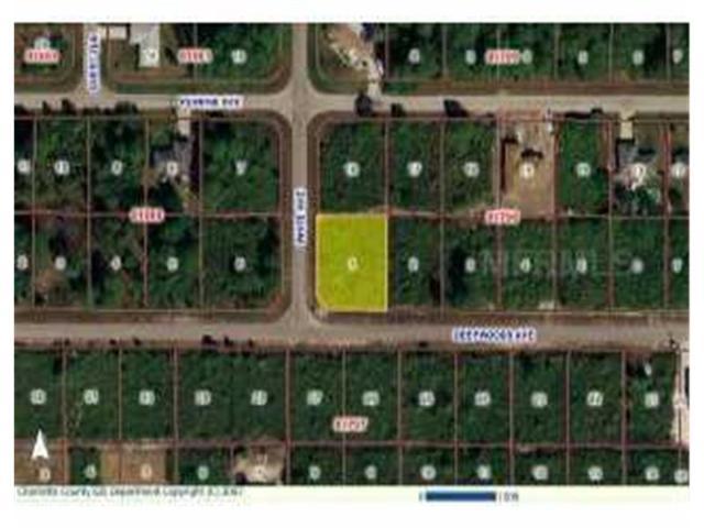 12462 Deepwoods Avenue AV, Port Charlotte, FL 33981 (MLS #N555612) :: The BRC Group, LLC