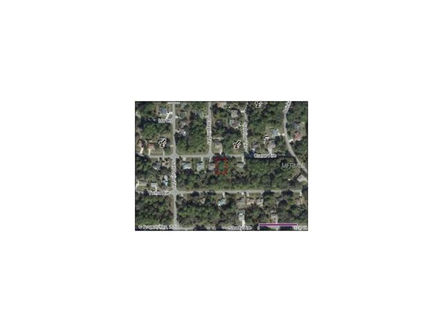 Crane Avenue, North Port, FL 34286 (MLS #N5912436) :: Griffin Group