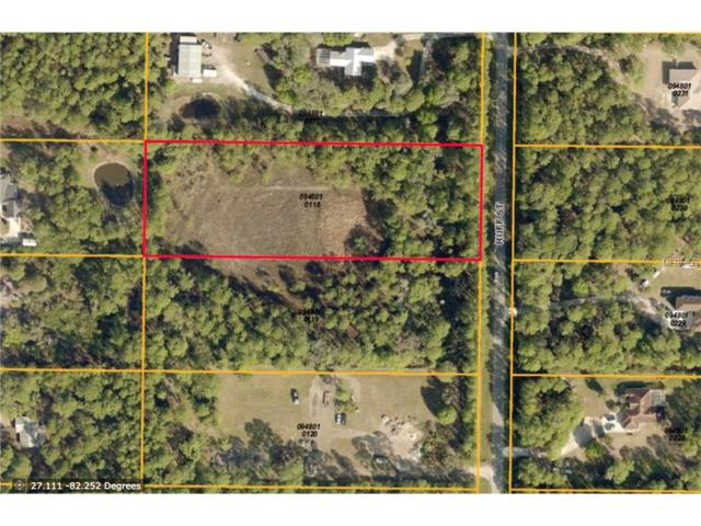 Ruff Street, North Port, FL 34291 (MLS #N5913358) :: White Sands Realty Group