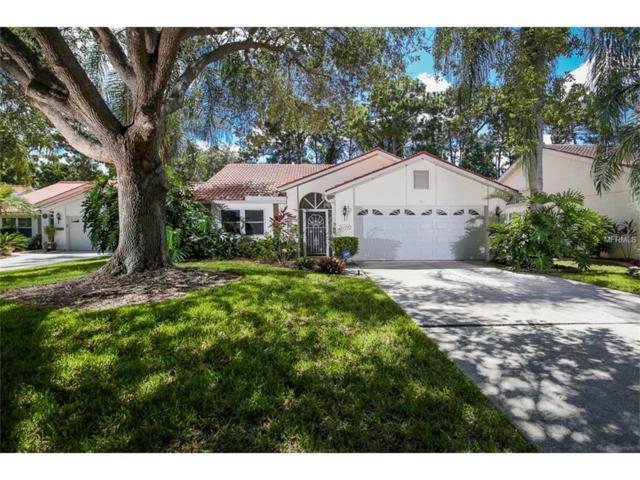 4174 Summertree Road, Venice, FL 34293 (MLS #N5913986) :: Medway Realty