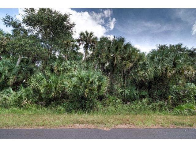 Ansley Road, North Port, FL 34288 (MLS #N5914577) :: Godwin Realty Group