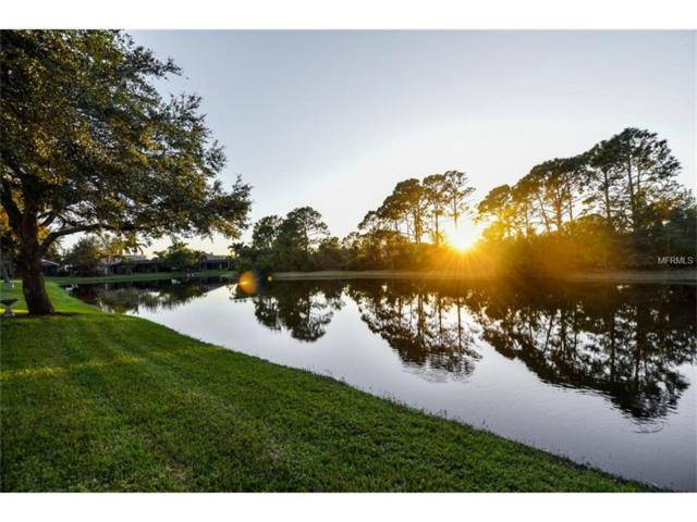 919 Scherer Way, Osprey, FL 34229 (MLS #N5915090) :: Medway Realty