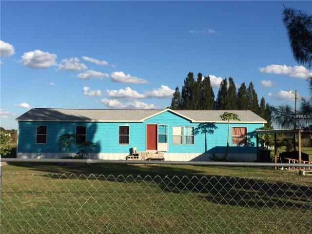 14916 Mcgrady Road, Wimauma, FL 33598 (MLS #N5915313) :: The Duncan Duo Team