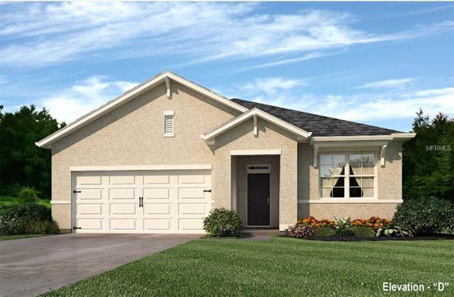 5139 N Cranberry Street, North Port, FL 34288 (MLS #N5915676) :: Griffin Group