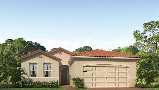 11922 Blazing Star Drive, Venice, FL 34293 (MLS #N5915689) :: Medway Realty