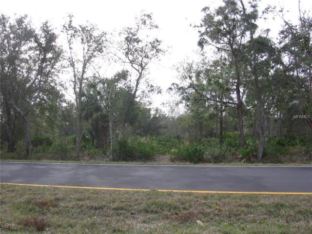 29435 Peace River Shores Boulevard, Punta Gorda, FL 33982 (MLS #N5916007) :: The Lora Keller & Jennifer Carpenter Team