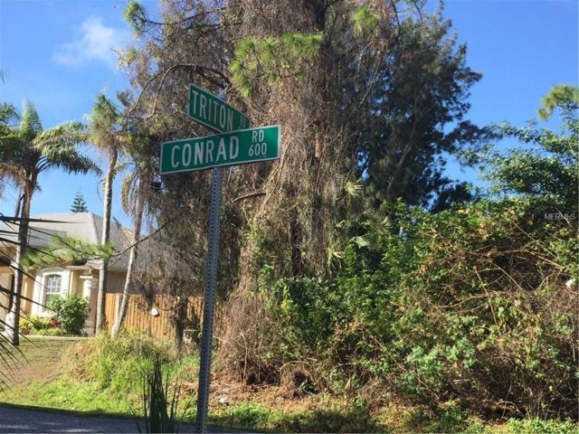 Conrad, Venice, FL 34293 (MLS #N5916343) :: Medway Realty