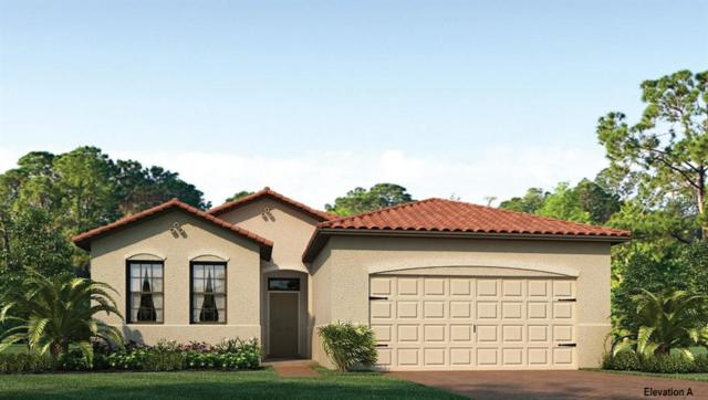 11968 Blazing Star Drive, Venice, FL 34293 (MLS #N5916361) :: Medway Realty