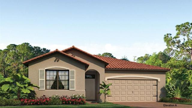 11976 Blazing Star Drive, Venice, FL 34293 (MLS #N5916364) :: Medway Realty
