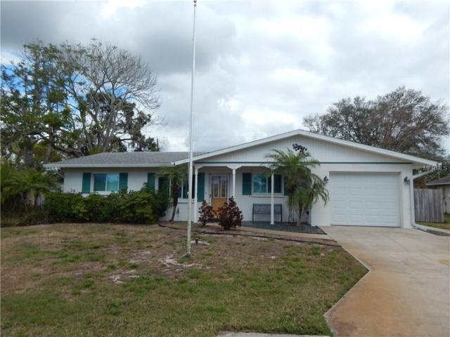 1789 Birch Drive, Venice, FL 34293 (MLS #N5916407) :: Medway Realty