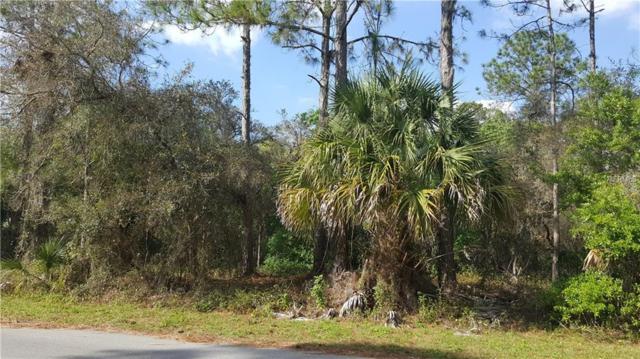 Shaffer Avenue, North Port, FL 34291 (MLS #N5916510) :: Griffin Group