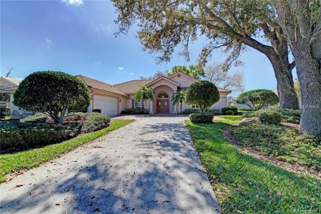 784 Bridle Oaks Drive, Venice, FL 34292 (MLS #N5916555) :: Griffin Group