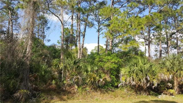 Landry Avenue, North Port, FL 34291 (MLS #N5916662) :: Griffin Group