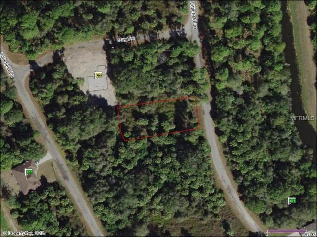 Littlefield Lane, North Port, FL 34288 (MLS #N5916850) :: Griffin Group