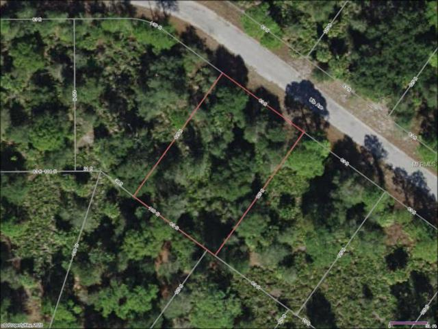 Ute Avenue, North Port, FL 34288 (MLS #N5916947) :: Griffin Group