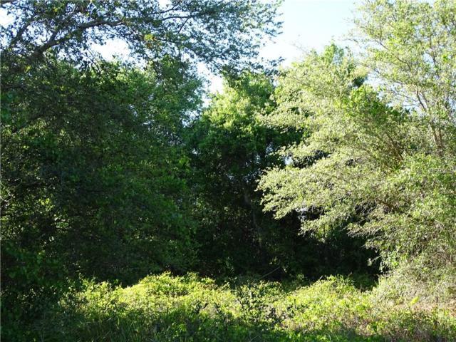 Garbett Terrace, North Port, FL 34288 (MLS #N5917054) :: RE/MAX Realtec Group