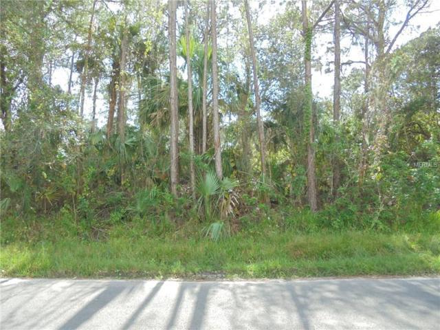 18166 Cheyenne Avenue, Port Charlotte, FL 33954 (MLS #N5917290) :: G World Properties