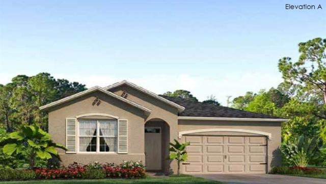 12016 Blazing Star Drive, Venice, FL 34293 (MLS #N6100046) :: Medway Realty