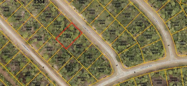 Dunmore Street, North Port, FL 34288 (MLS #N6100133) :: Griffin Group