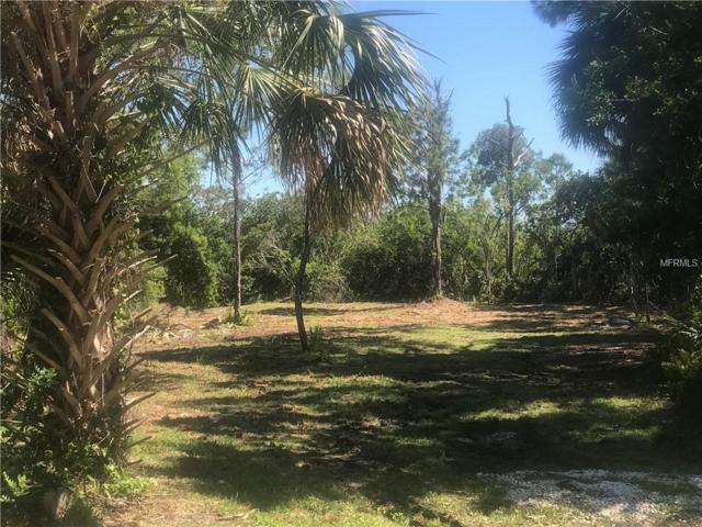Hibiscus Road, Venice, FL 34293 (MLS #N6100174) :: Zarghami Group