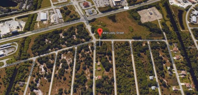 493 Liddy Street, Port Charlotte, FL 33954 (MLS #N6100389) :: The Price Group