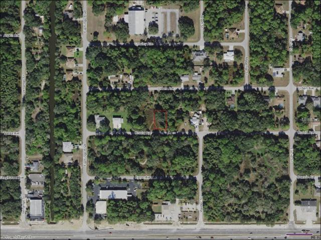 17064 Ursula Avenue, Port Charlotte, FL 33954 (MLS #N6100645) :: Team Pepka