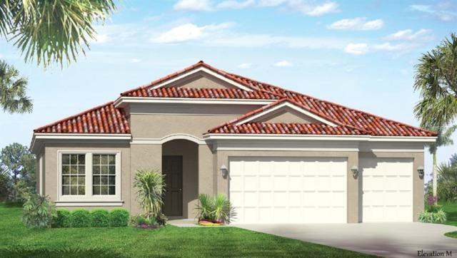 24079 Riverfront Drive, Port Charlotte, FL 33980 (MLS #N6101209) :: Zarghami Group
