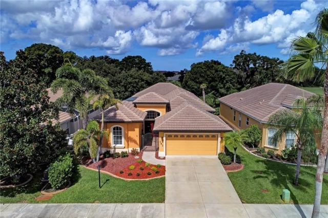 141 Valencia Lakes Drive, Venice, FL 34292 (MLS #N6101593) :: Medway Realty