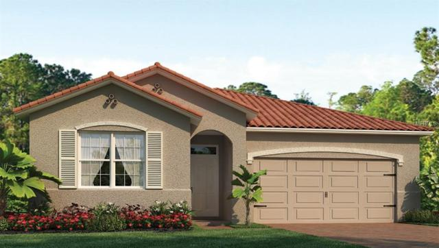123 Pescador Place, North Venice, FL 34275 (MLS #N6101683) :: The Duncan Duo Team