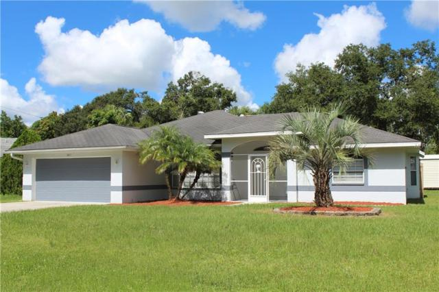 3817 Fontainebleau Street, North Port, FL 34287 (MLS #N6101831) :: Team Suzy Kolaz