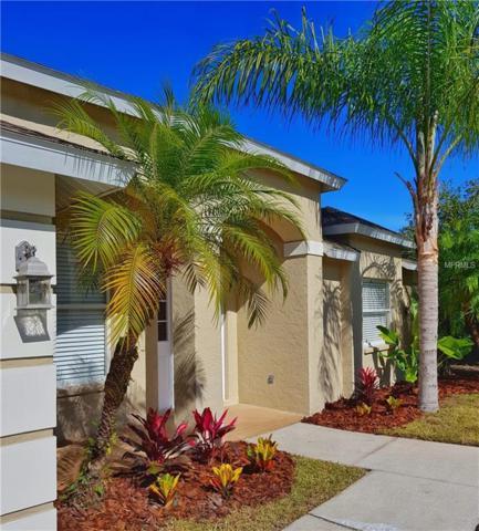 3639 62ND Avenue E, Bradenton, FL 34203 (MLS #N6101922) :: The Duncan Duo Team