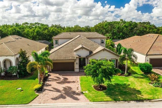 10228 Eastwood Drive, Bradenton, FL 34211 (MLS #N6102299) :: The Light Team